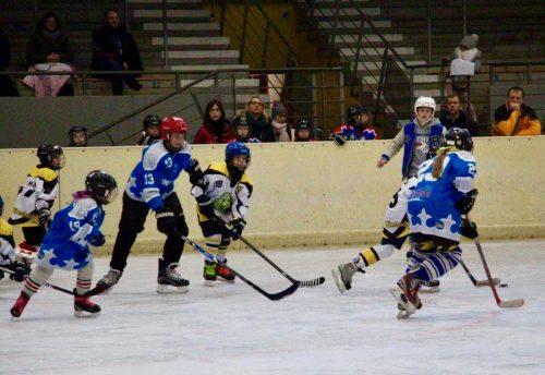 Dritter Platz für Ice Tigers in Pforzheim, Eishockey-Spieler auf dem Eis