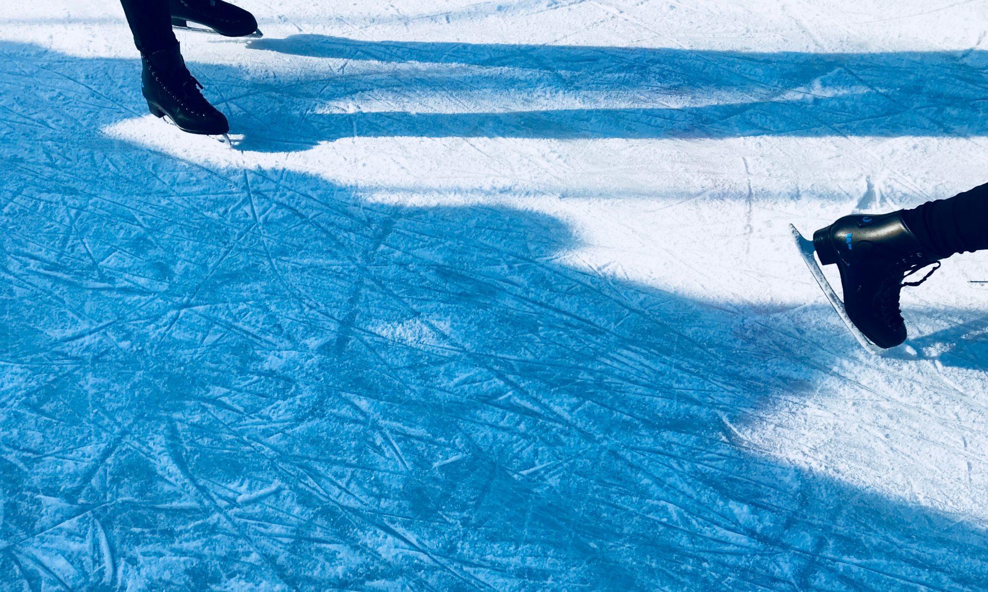 Förderverein Eissport für Wiesbaden e.V.